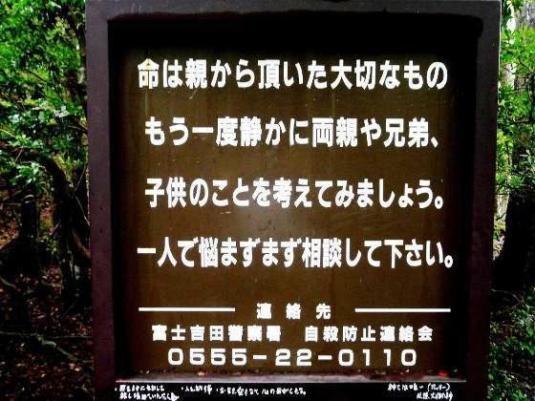 Bosque de Aokigahara 04